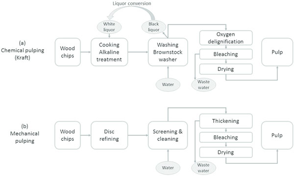 chemical pulping process and mechanical pulping process