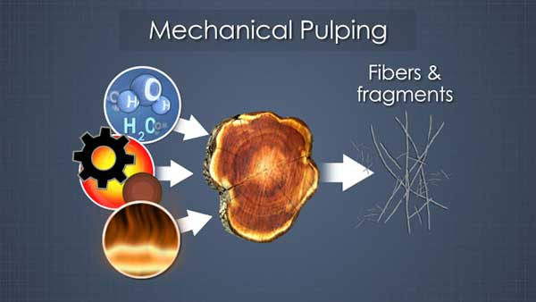 chemical pulping process